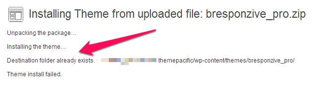 WP-Theme-Update-error