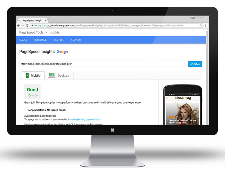 Google Page speed 100 theme